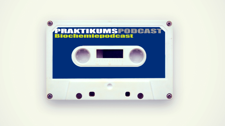 Large praktikumspodcast