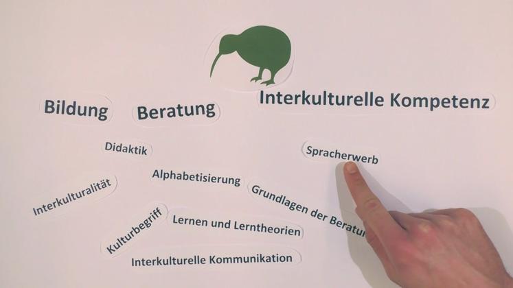 Podcampus kiwi welcome ehrenamt informations und for Nc erziehungswissenschaften
